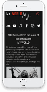 Professional website design for musicians and entertainment